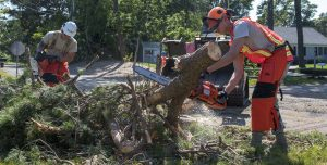 National Guard Activated to Support Cape Cod Tornado Recovery
